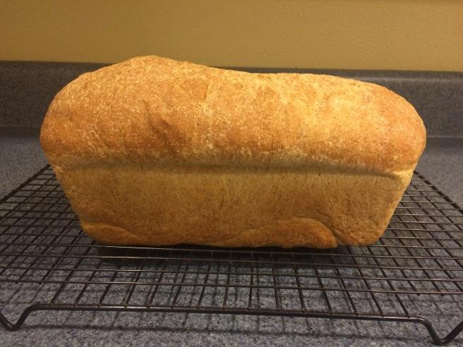 Light Wheat Bread, Smitten Kitchen